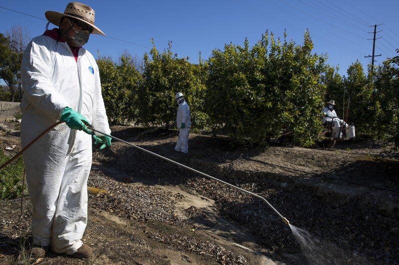 An agriculture worker sprays pesticide on a farm.