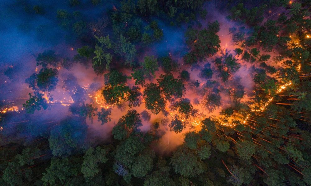 Overhead image of a wildfire burning in Russia's Krasnoyarsk region