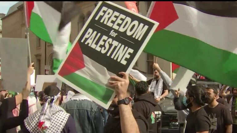 """Pro-Palestine protesters at a march in Philadelphia. Palestinian flags in the background while someone holds up a sign that says """"Freedom for Palestine."""""""