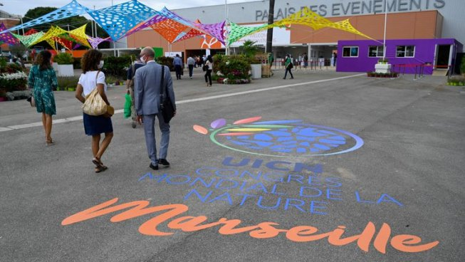 Three people wearing dress clothes and face masks walk across a large stretch of pavement toward a building. On the pavement, the name of the conference is painted in French